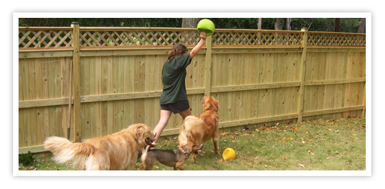 Follow the leader - one of our favorite games at Pet Partners